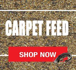 Carpet Feed